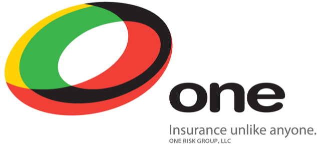 One Risk Group, LLC logo